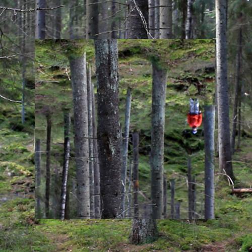 Mindscapes Landscapes performance, Salvesen, Forest, Suomi100